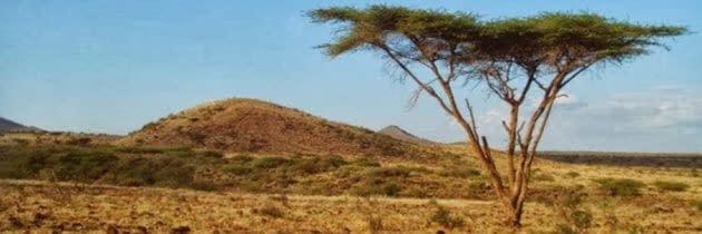 Kenya: un vis devenit realitate